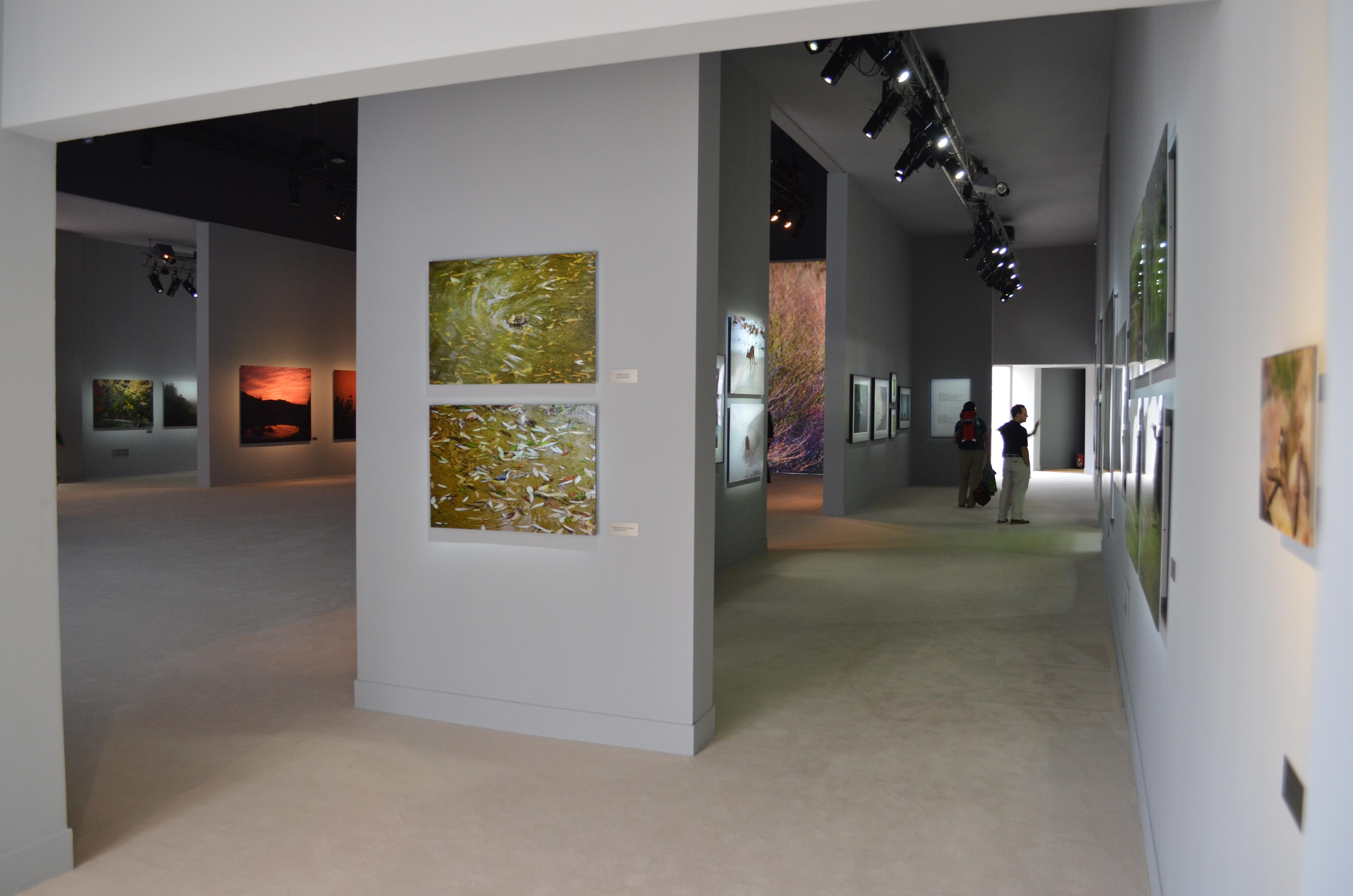 Exposition de ma fen tre ahae jardin des tuileries for Ahae de ma fenetre
